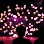 2017年厚木の鮎まつり大花火大会!今年は有料観覧席で楽しもう