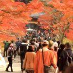 京都のおすすめ紅葉スポットをまわるコース紹介!南禅寺・永観堂ルート