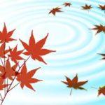 京都のおすすめ紅葉スポットをまわるコース紹介!東福寺、泉湧寺ルート