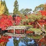 京都の紅葉が綺麗なおすすめスポット!南禅寺・永観堂その他寺院紹介