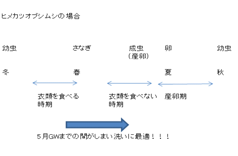 image010