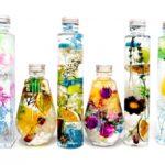 ハーバリウムに生花や造花は使っていいの?花以外の物は入れていい?